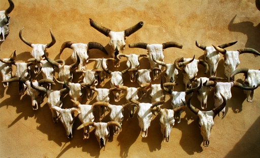 Ghost Herd;  Gage Hotel, Marathon, Texas 1996