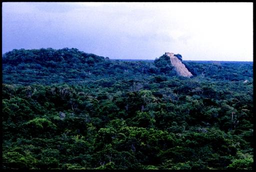 Nohoc Mul Pyramid; Coba, Quintana Roo, Mexico 1986